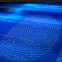 Selon Visa, l'authentification et la vérification par biométrie offrent l'opportunité de simplifier et d'améliorer l'expérience client.