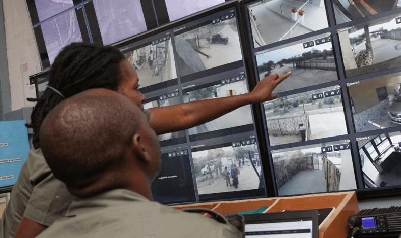 Protection connectée contre le braconnage : Cisco et Dimension Data alliés